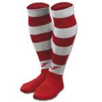 Calze Zebra II socks cod. 602